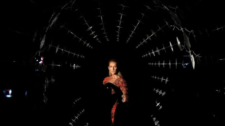 Check Out Celine Dion's Optical Illusion Dress